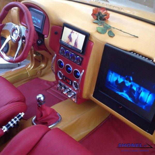 Seat Ibiza Camaleonte On
